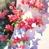watercolour painting of Finca Bougainvillea by painting tutor Barry Herniman